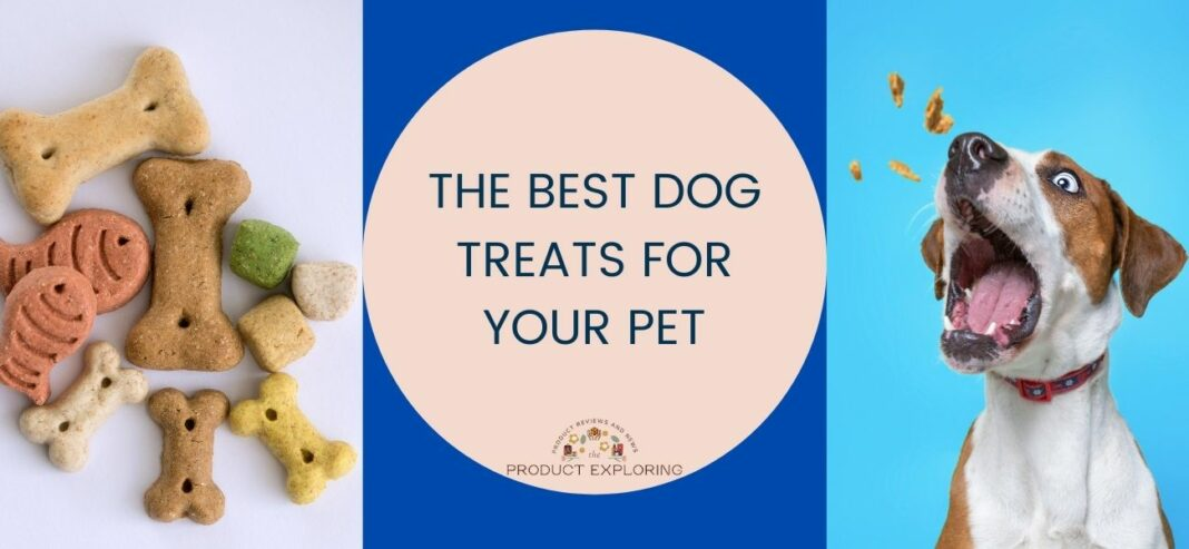 The Best Dog Treats For Your Pet